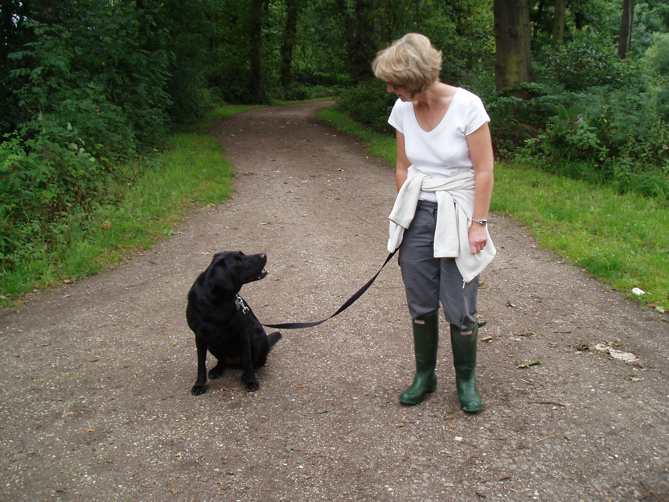 Dog Walking Liverpool, Well Esme how do you like Croxteth Country Park